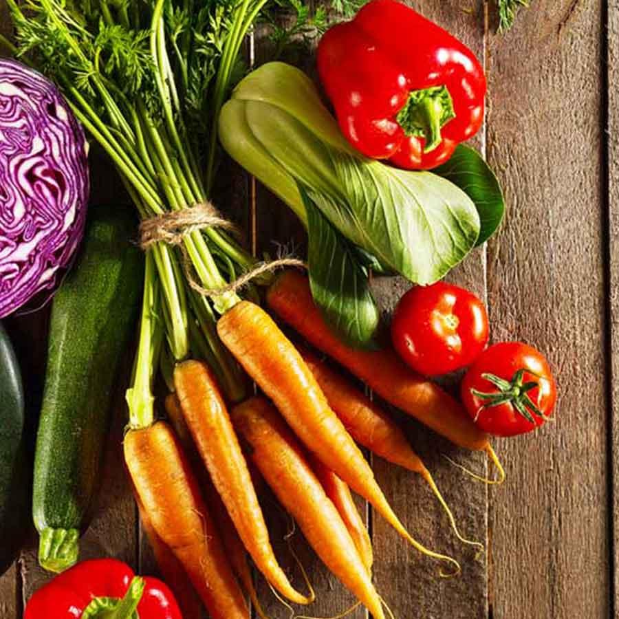 legumes-mbio